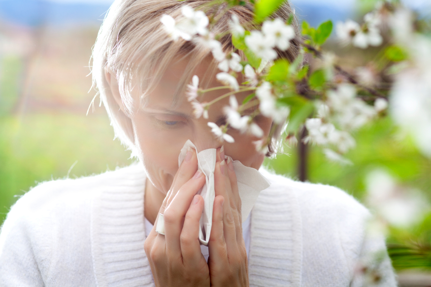 Allergies de printemps ?